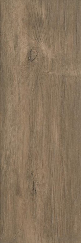 P WOOD BASIC BROWN GRES SZKL. 20X60 G.1