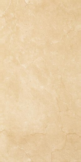 P INSPIRATION BROWN SCIANA 30X60 G.1