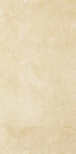 P INSPIRATION BROWN SCIANA 30X60 G.2